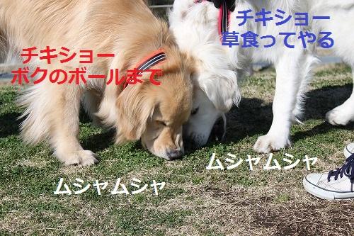 s-IMG_4891.jpg