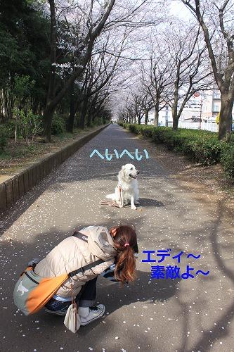 s-IMG_5080.jpg