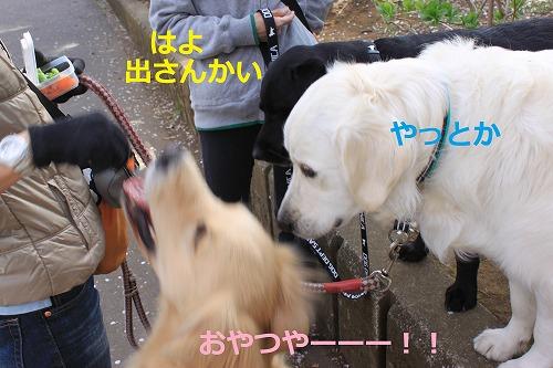 s-IMG_5089.jpg