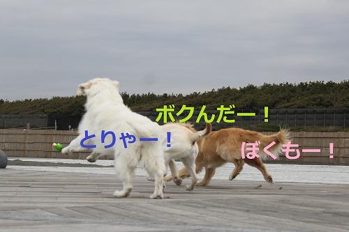 s-IMG_5252_20120420185319.jpg