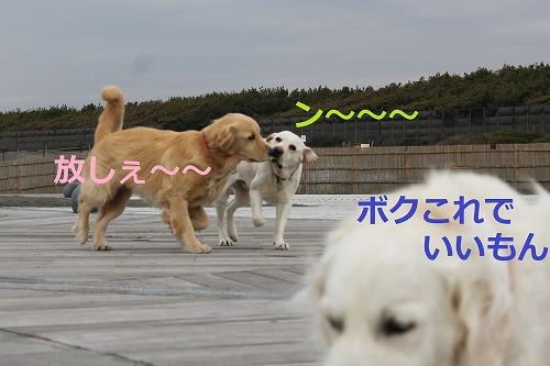 s-IMG_5255_20120420185357.jpg