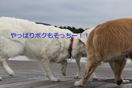 s-IMG_5259_20120420185552.jpg
