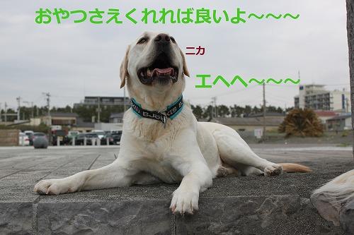 s-IMG_5266.jpg