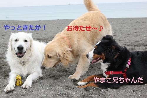 s-IMG_5271.jpg