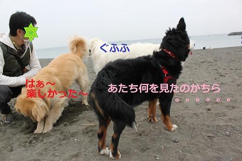 s-IMG_5278_20120423141237.jpg