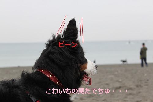 s-IMG_5280.jpg