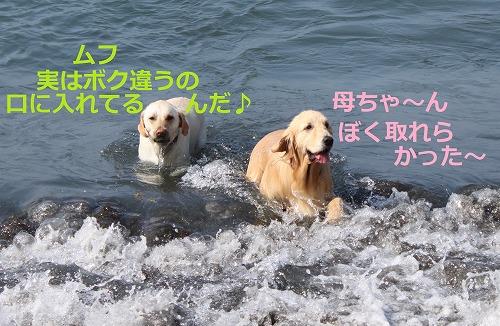 s-IMG_5363.jpg