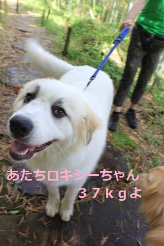 s-IMG_5439.jpg