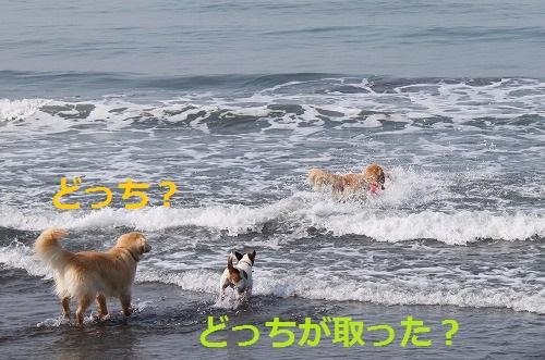 s-IMG_5490.jpg