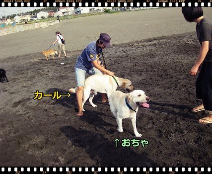 s-IMG_5566_20121001192905.jpg