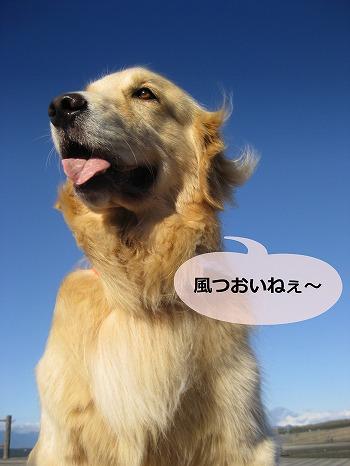 s-IMG_5588_20121002210236.jpg