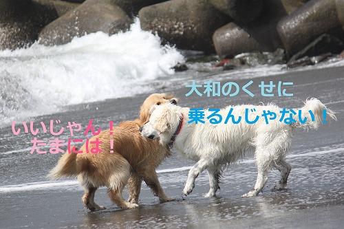 s-IMG_5680.jpg
