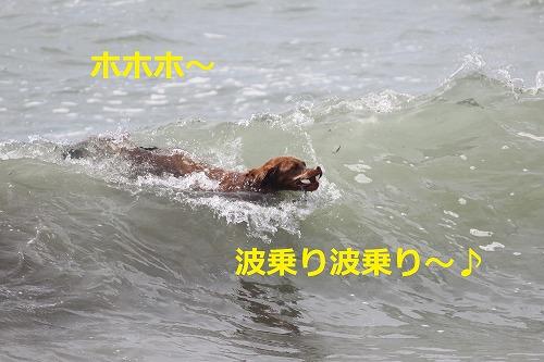 s-IMG_5686.jpg