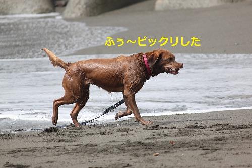 s-IMG_5690.jpg