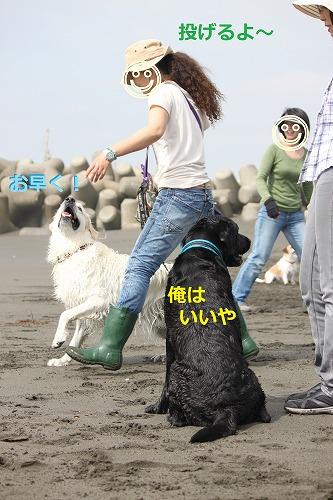 s-IMG_5703_20120518203132.jpg