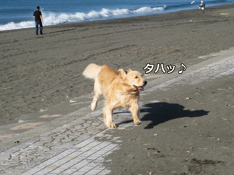 s-IMG_5734.jpg