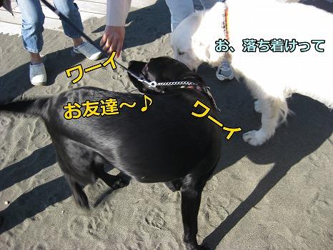 s-IMG_5761_20121010224327.jpg