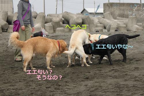 s-IMG_5807_20120524131112.jpg