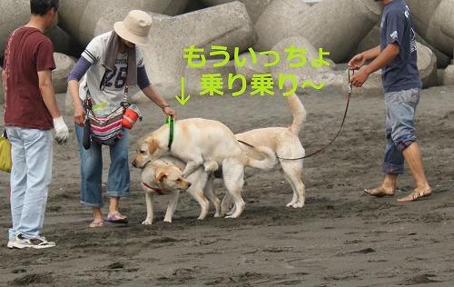 s-IMG_5813_20120524131109.jpg