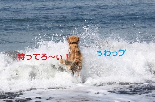 s-IMG_6177.jpg