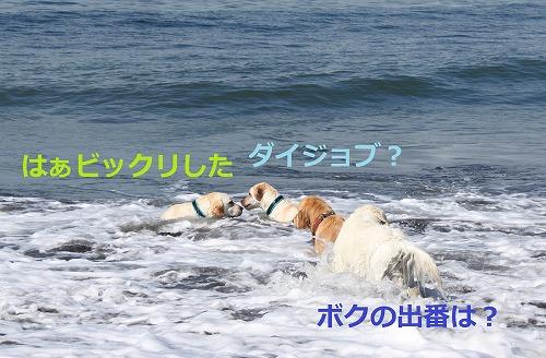 s-IMG_6179.jpg