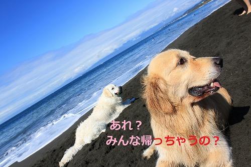s-IMG_6225_20120612134243.jpg