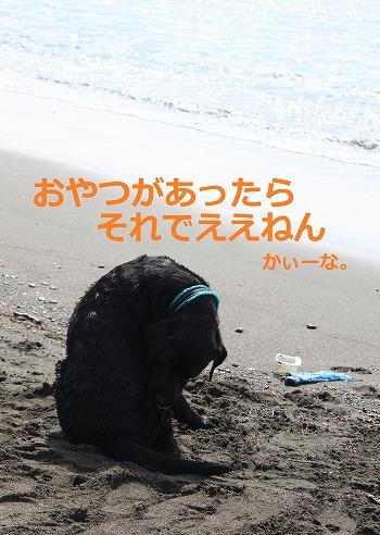 s-IMG_6467_20120628212052.jpg