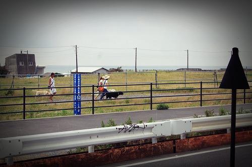 s-IMG_6511.jpg