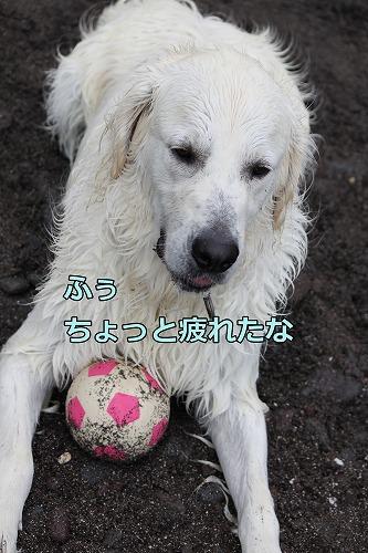 s-IMG_6662.jpg