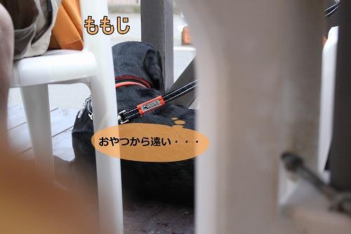 s-IMG_6935_20120726105758.jpg
