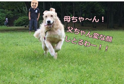 s-IMG_7207_20120809170811.jpg