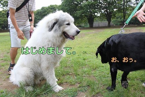 s-IMG_7225.jpg