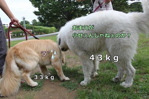 s-IMG_7236.jpg