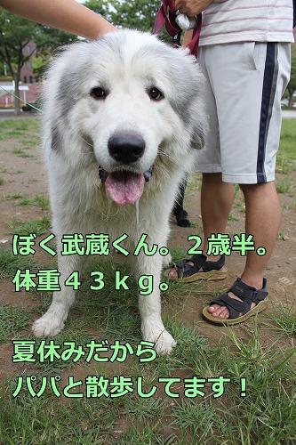 s-IMG_7246_20120808231507.jpg