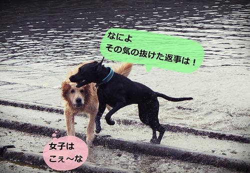 s-IMG_7318.jpg