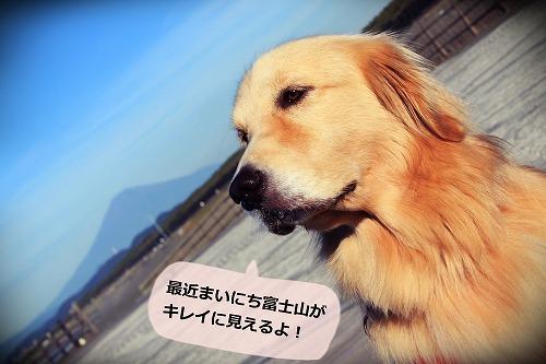s-IMG_7465.jpg