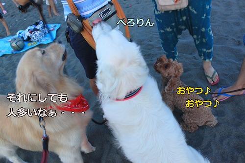 s-IMG_7534.jpg