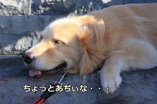 s-IMG_7707.jpg