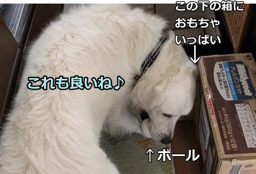 s-IMG_7930.jpg