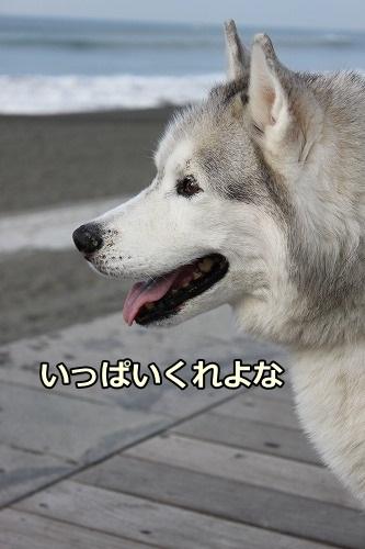 s-IMG_7942.jpg