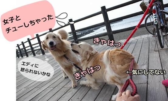 s-IMG_7947_20121017151406.jpg