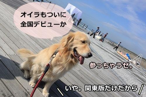 s-IMG_7998.jpg