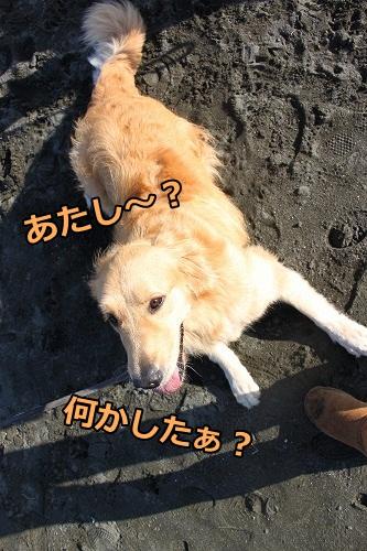 s-IMG_8017.jpg