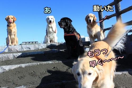 s-IMG_8075.jpg