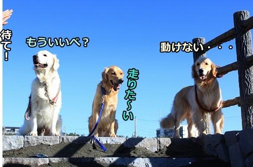 s-IMG_8076.jpg