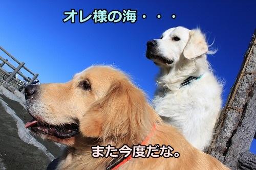 s-IMG_8086_20121025212625.jpg