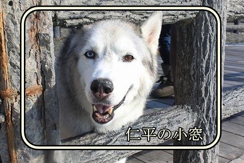 s-IMG_8400_20121114204927.jpg