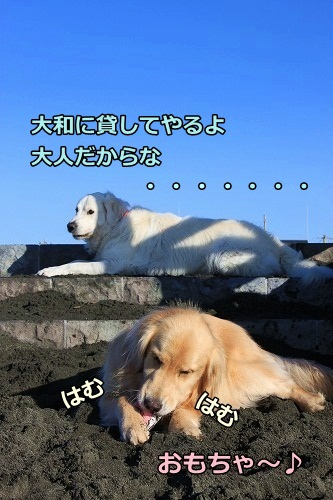 s-IMG_8671.jpg