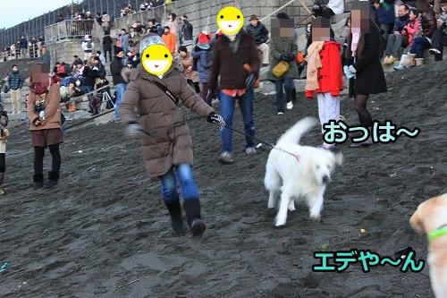 s-IMG_8972_20130101214843.jpg