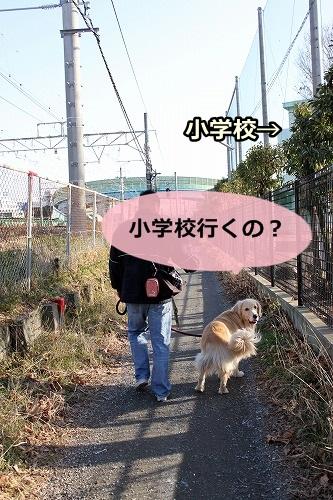s-IMG_9066.jpg